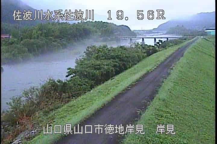 佐波川-岸見