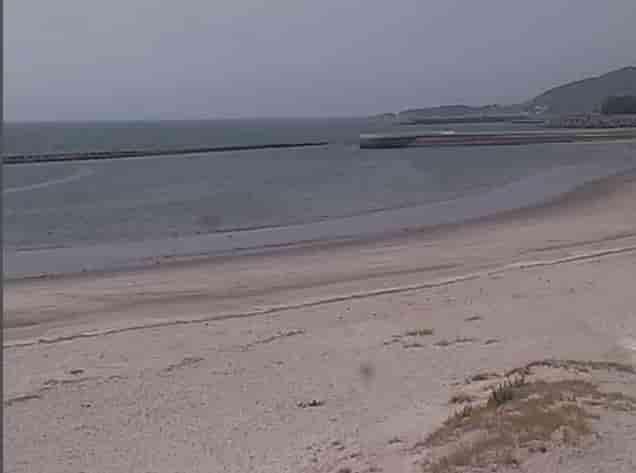 江口海浜公園