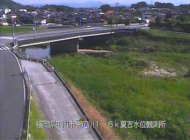 金辺川-夏吉