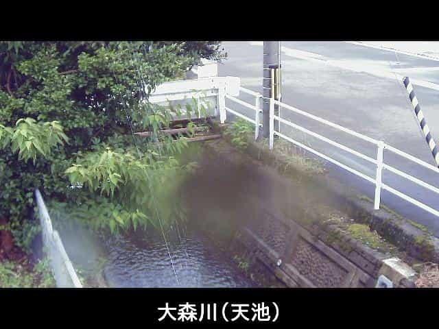 大森川-天池