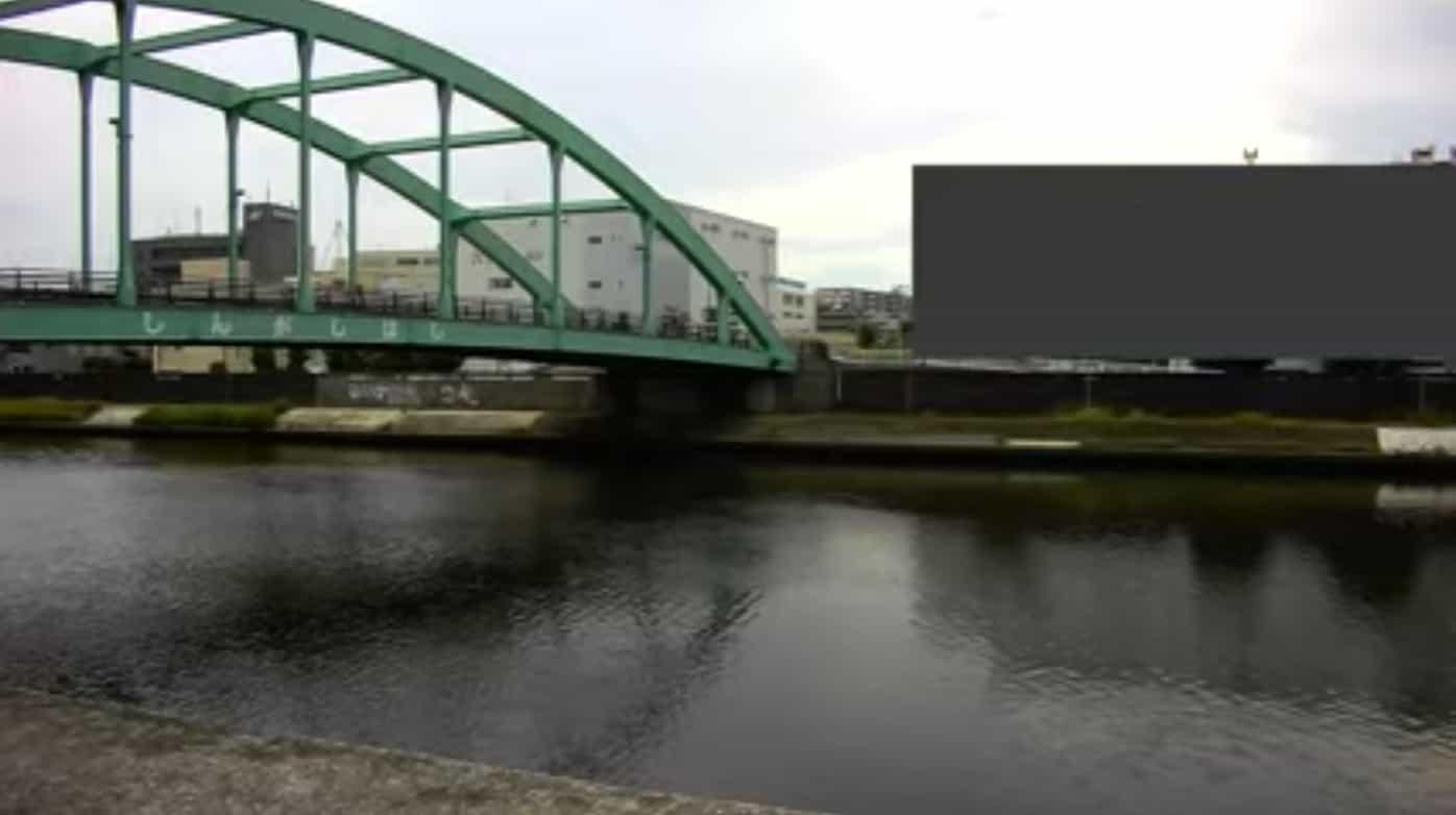 新河岸川-新河岸橋