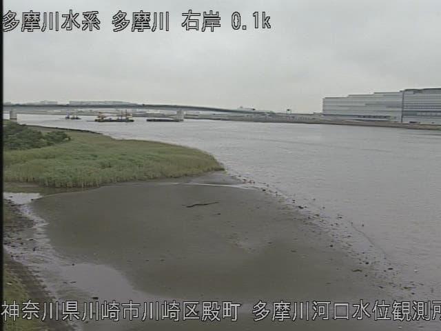 多摩川河口水位観測所