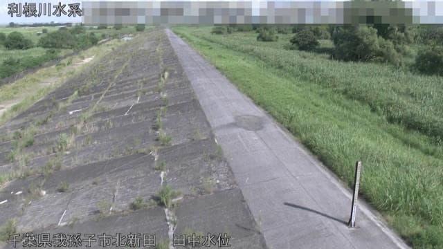 利根川-田中水位