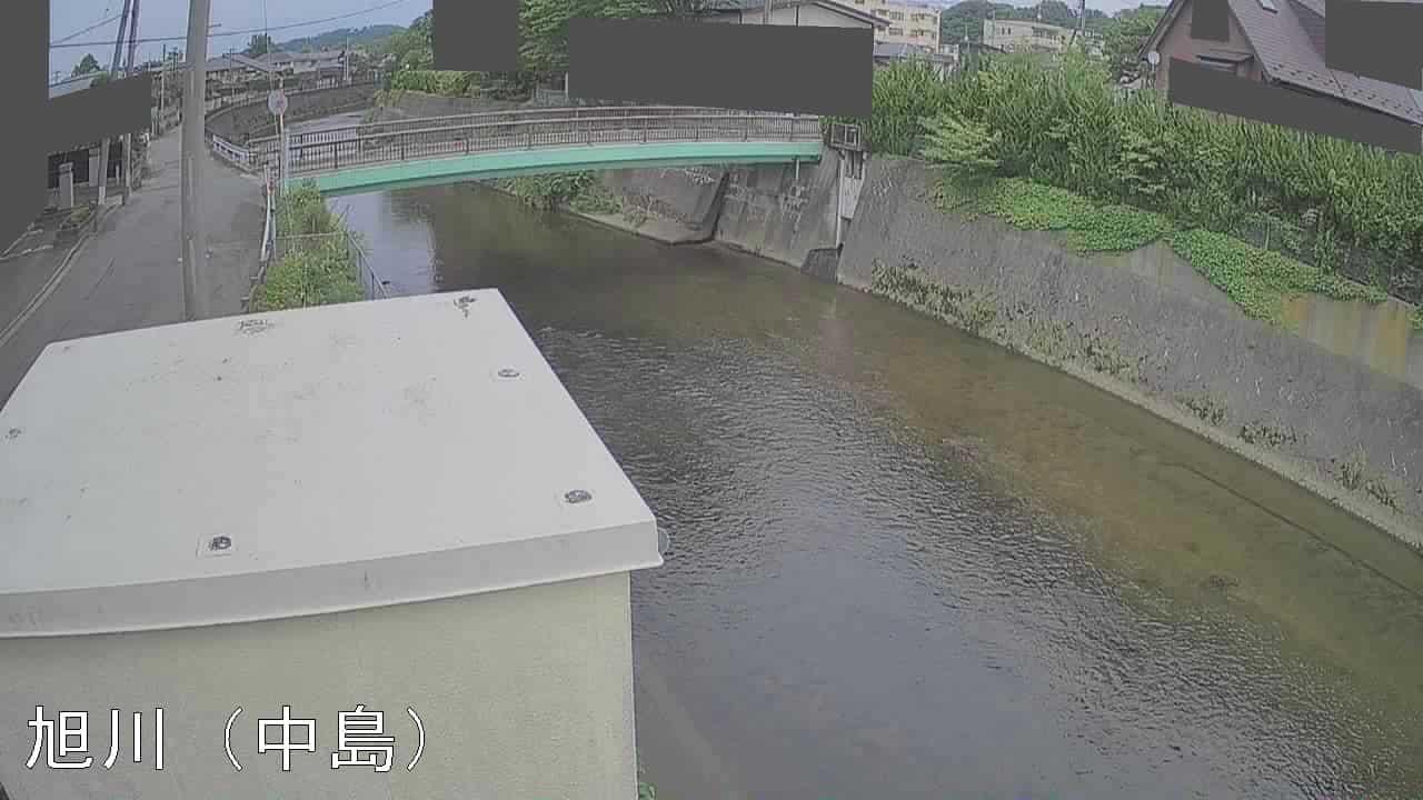 旭川-中島水位局(保戸野反橋)
