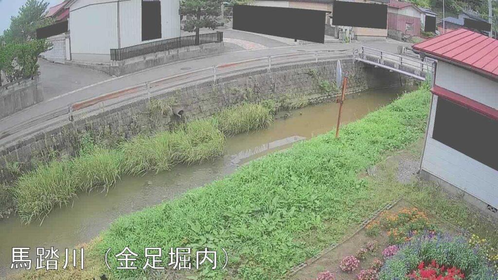 馬踏川-金足堀内