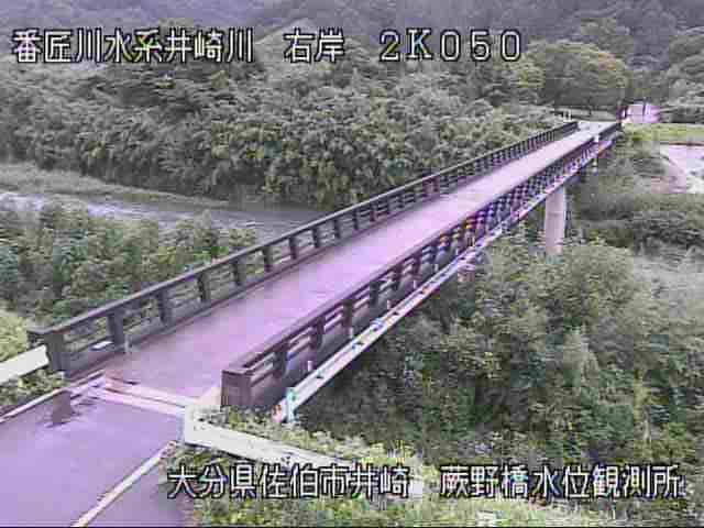 井崎川-蕨野橋水位観測所付近