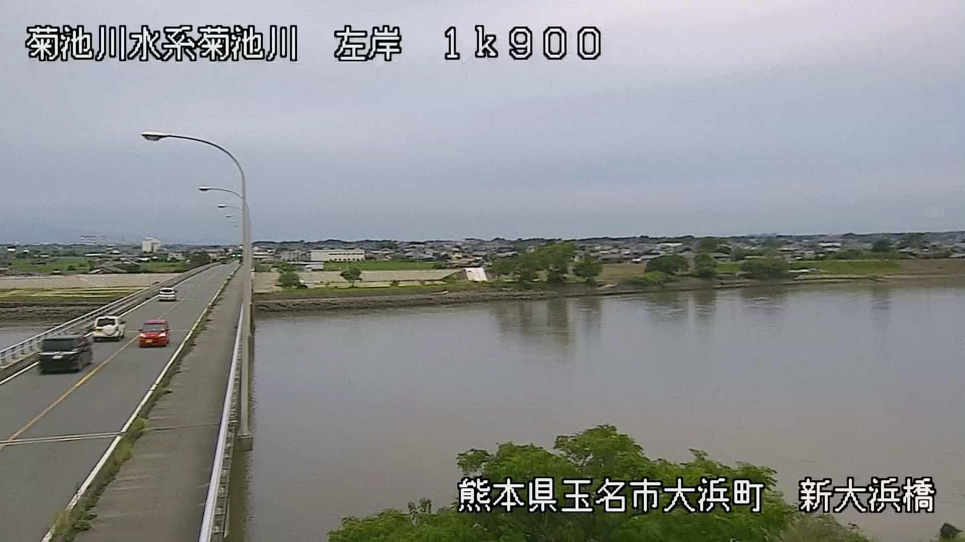菊池川-新大浜橋